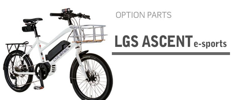 LGS ASCENT e-sports